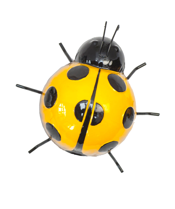 Yellow Ladybird Wall Art - Medium