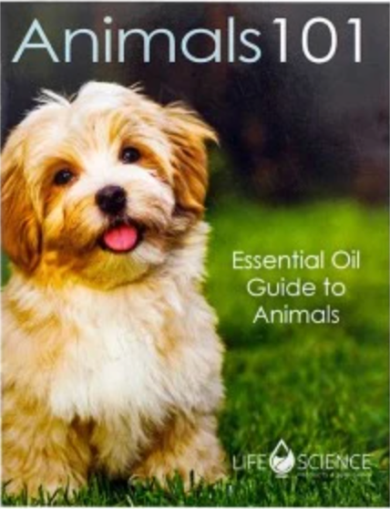 Animals 101 Mini Booklet (English)