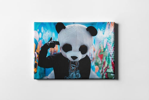 Unsplash Panda Costume