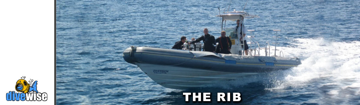 Boat Diving Trips