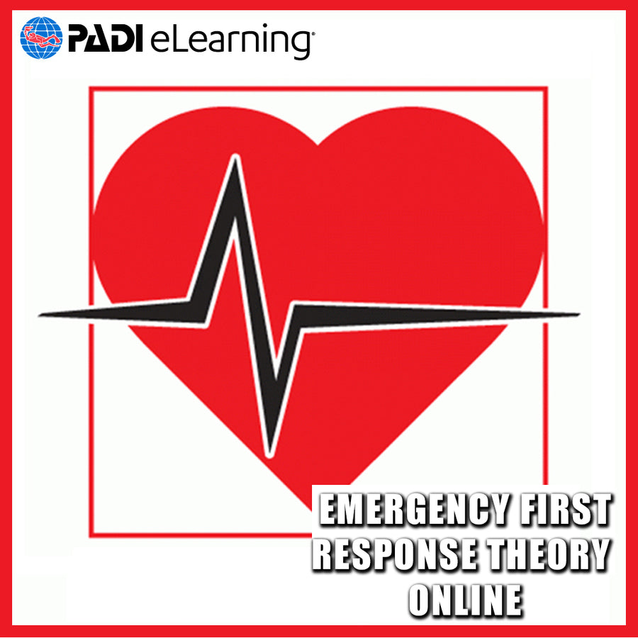 Emergency First Response Theory Online