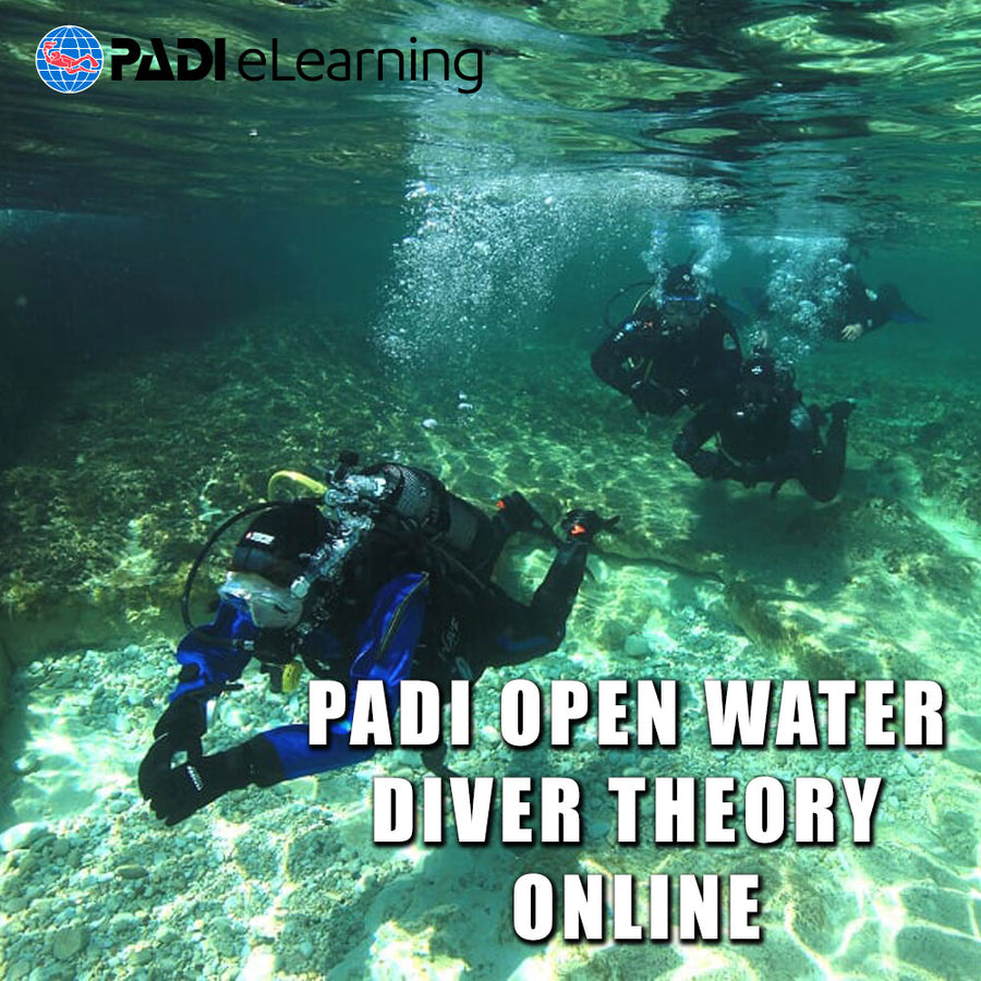 PADI Open Water Theory Online