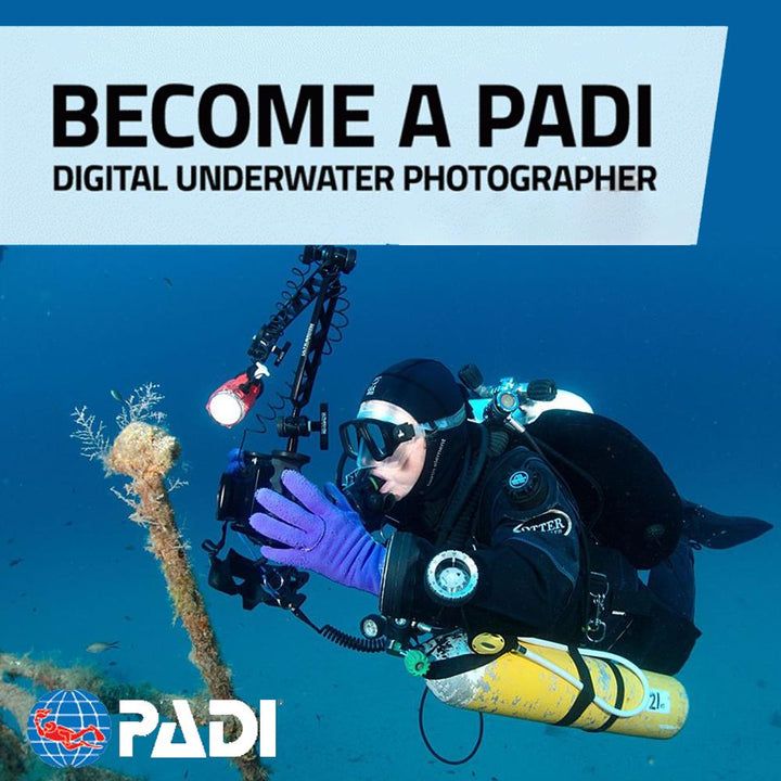 PADI Underwater Photography