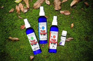 Bugs BeGone - Natural Insect Repellent (Spray)