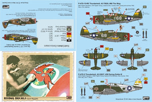 RD32002 Rising Decals 1/32 Colouful Thunderbolts MTO & PTO