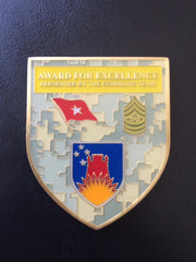 141st Maneuver Enhancement Brigade Commanding General and CSM