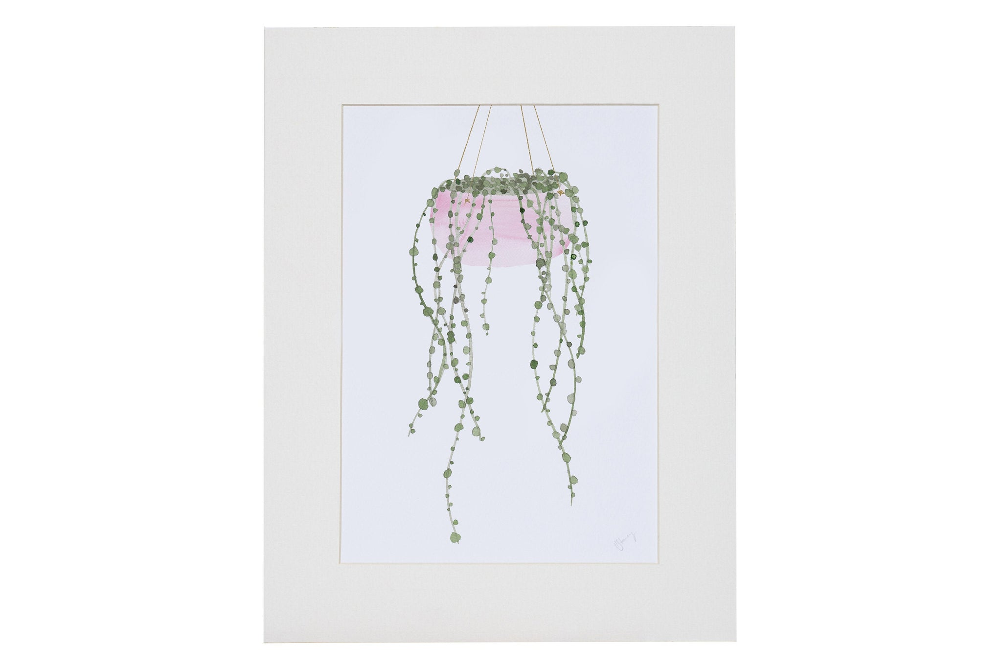 String of Pearls Plant Art Print - Yellowstone Art Boutique