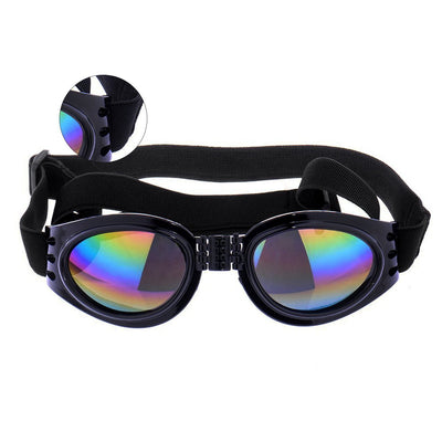 Uv Protective Big Dogs Sunglasses