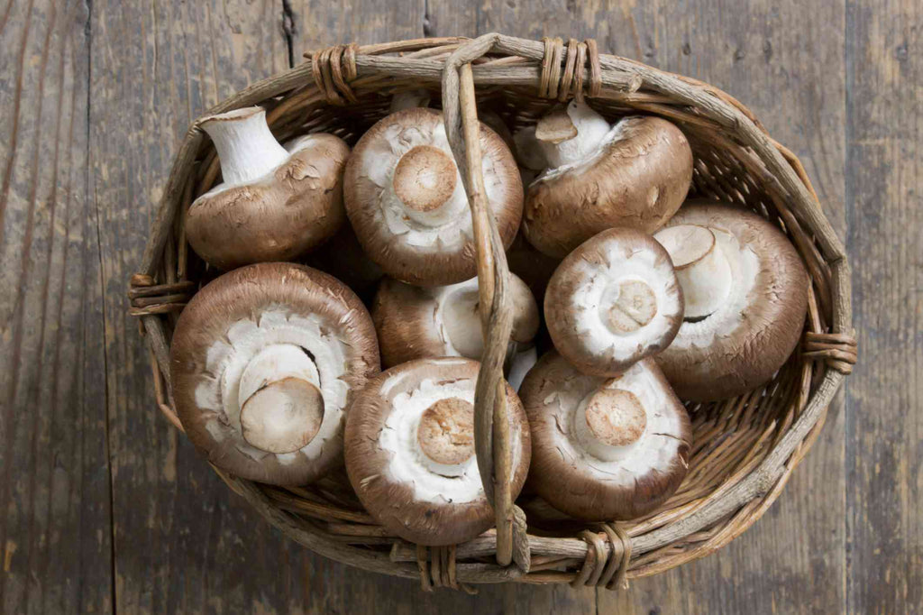Mushrooms - Layalina Deli and Organic Grocery