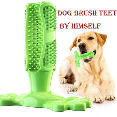 Dog Toothbrush Tooth Cleaning - Pawsomatic
