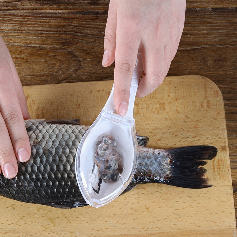 Fish Skin Brush Scraper With Knife - Classy & Unique