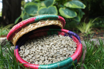 Yirgacheffe (Green/Unroasted)