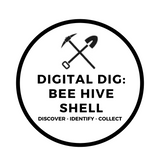 Digital Dig Bee Hive Shell