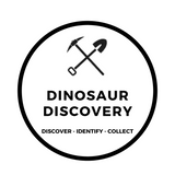 Dinosaur Discovery Excavating Adventures