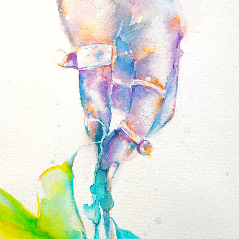 Watercolor No 1 - Hand & Hummingbird Studies