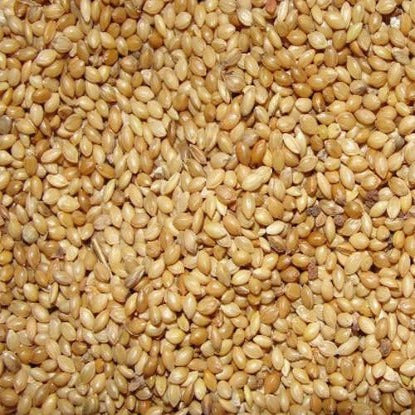 Foxtail Millet Thinai   500 g