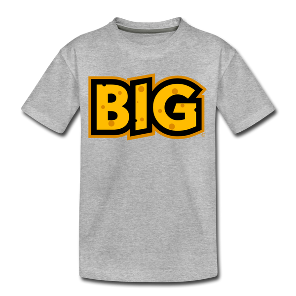 Wisconsin Big Cheese BIG Kids' Premium T-Shirt - heather gray