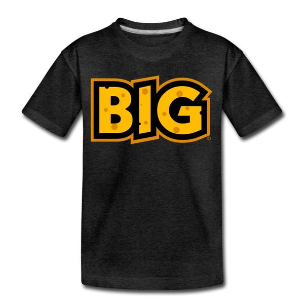 Wisconsin Big Cheese BIG Kids' Premium T-Shirt - charcoal gray