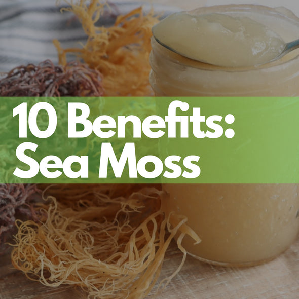 Sea Moss – 10 Healthy Benefits of Sea Moss You Should Know