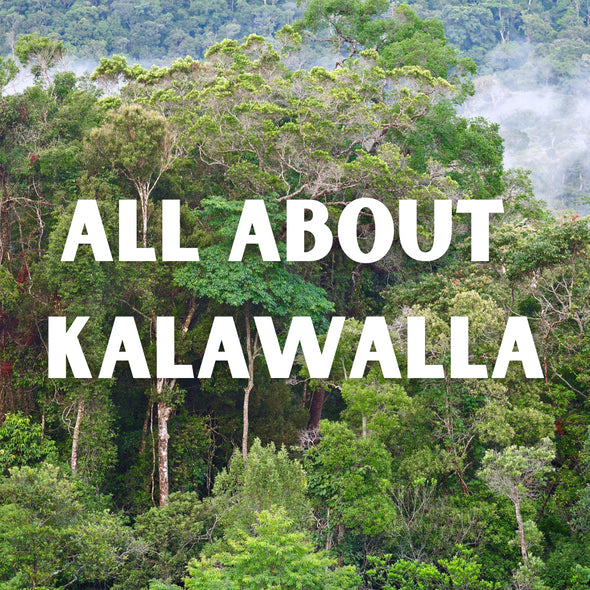 All You Need To Know About Kalawalla