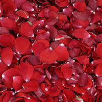 Red and Deep Red Rose Petals - Back In Stock Soon