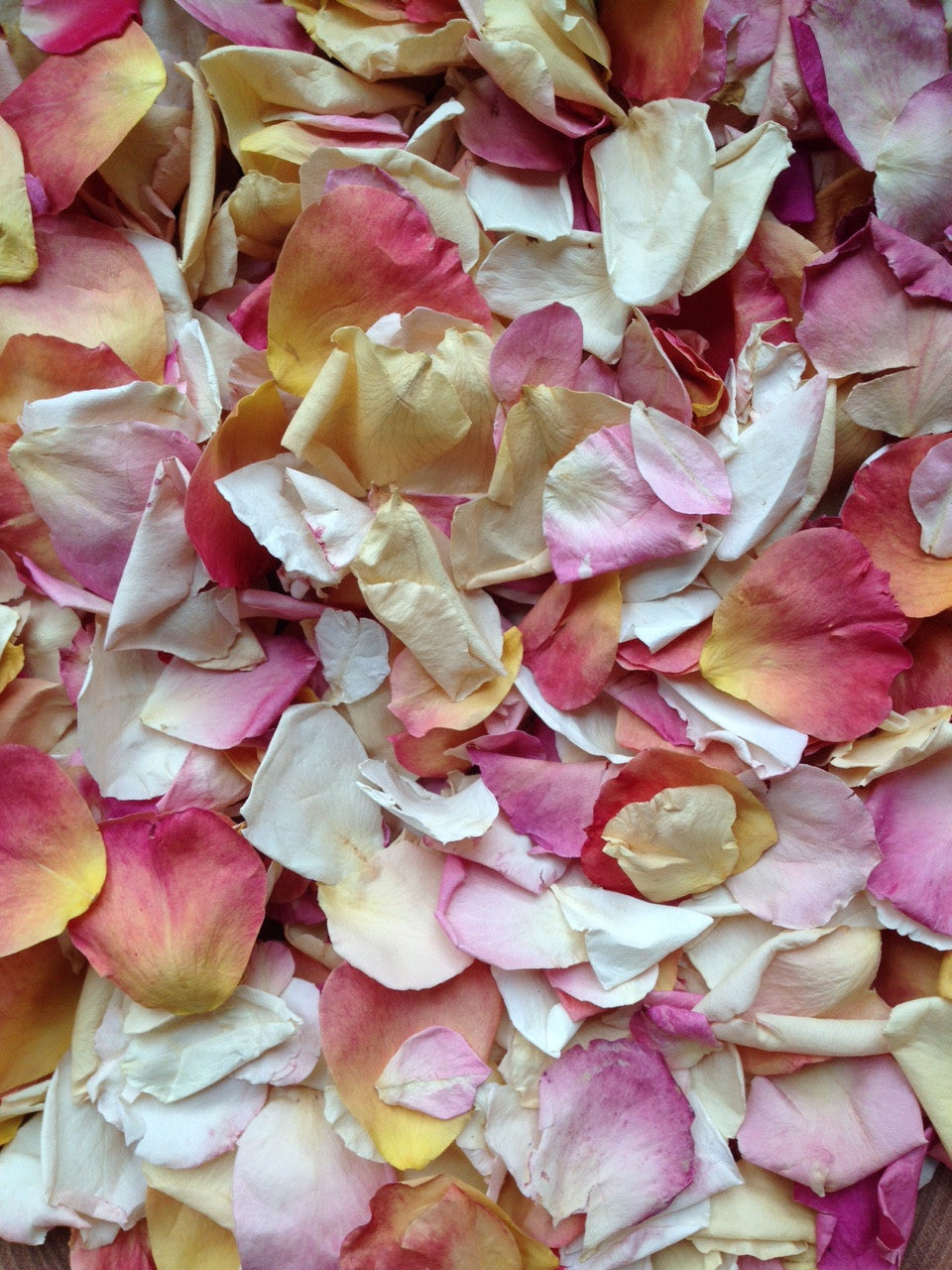 Beautiful Summer Petals on Sale - Grab Yourself a Bargain!