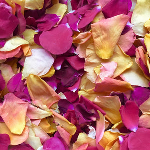 Petals To Spice Up Your Halloween