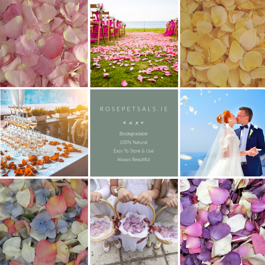 Wedding Colour Trends For 2019