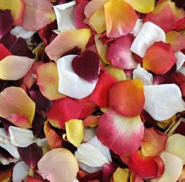 Autumnal Rose Petals To Add A Pop Of Colour To Your Wedding Day