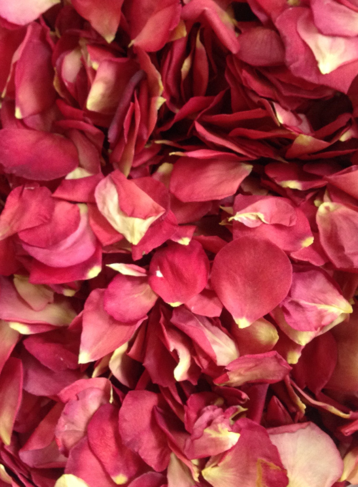 Check out our new Vintage Red Rose Petals, just in time for Valentine's Day