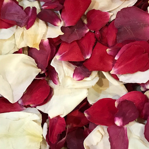 Real Freeze Dried Biodegradable Rose Petal Wedding Confetti Ireland
