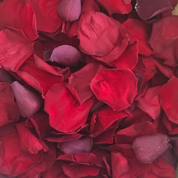 Red Rose Petal Confetti for Proposals and Weddings - from Rosepetals.ie Ireland providers of freeze dried real eco friendly rose petals Ireland