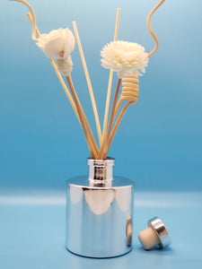 Scents of Utopia Diffuser Set-Silver