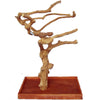 Large Java Wood Tree Boxed AE250L