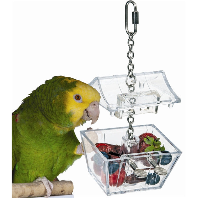 Parrots Treasure Box Foraging Toy