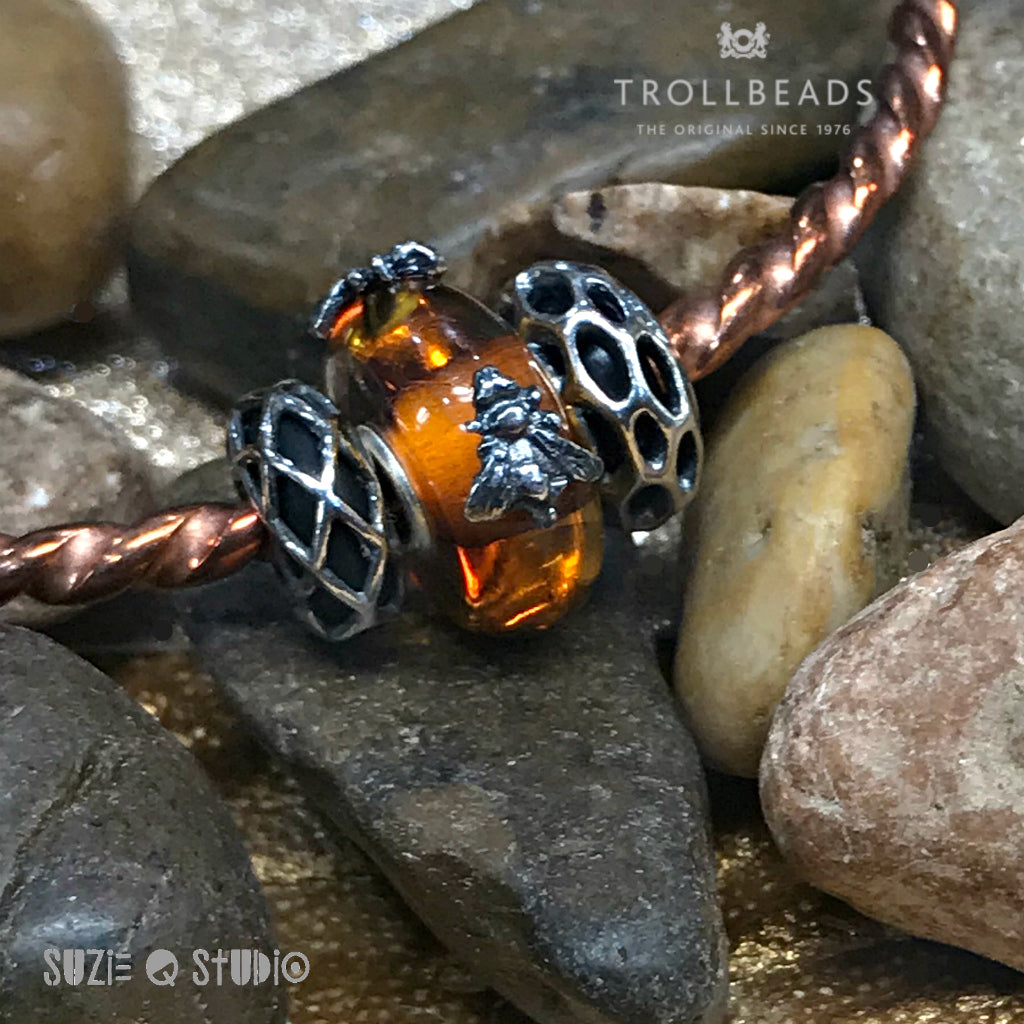 Suzie Q Studio in Calgary is excited to introduce Wings of Amber. These unique stunning beads come with either one or two Sterling Silver insects resting their wings on the golden amber. They are available for only a limited time so drop by Suzie Q's to get yours before they're gone.