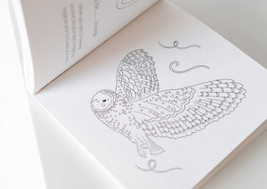 Coloring book of mindfulness. An owl in black and white.