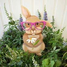 Load image into Gallery viewer, Brown Rabbit with Pink Glasses