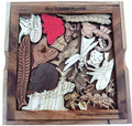Bug Lovers Puzzle - Entomologists Dilemma Picture Frame Puzzle Creative Crafthouse