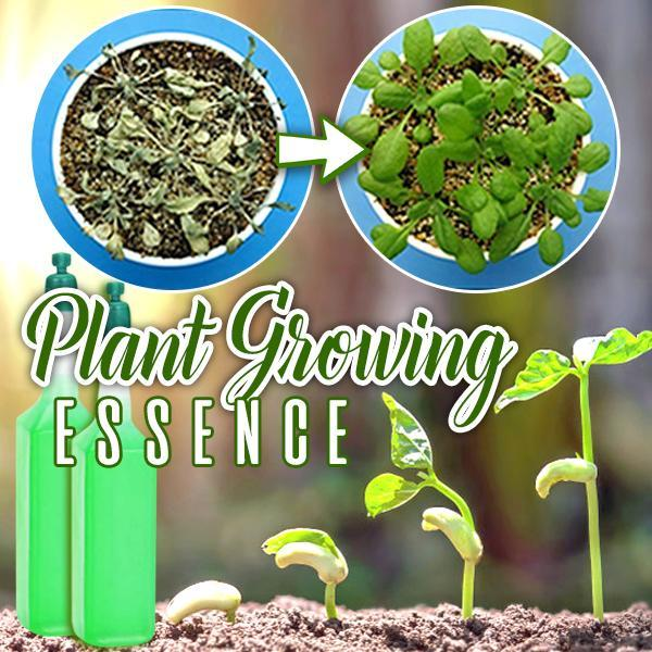 Plant Growing Essence