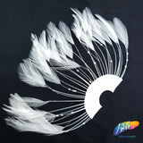 Stripped Hackle Half Pinwheel Feathers