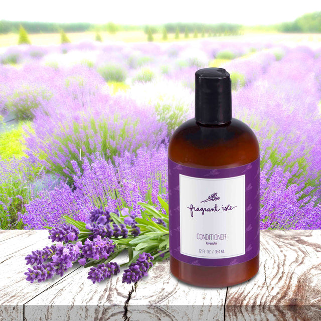 Lavender Conditioner - 12 oz