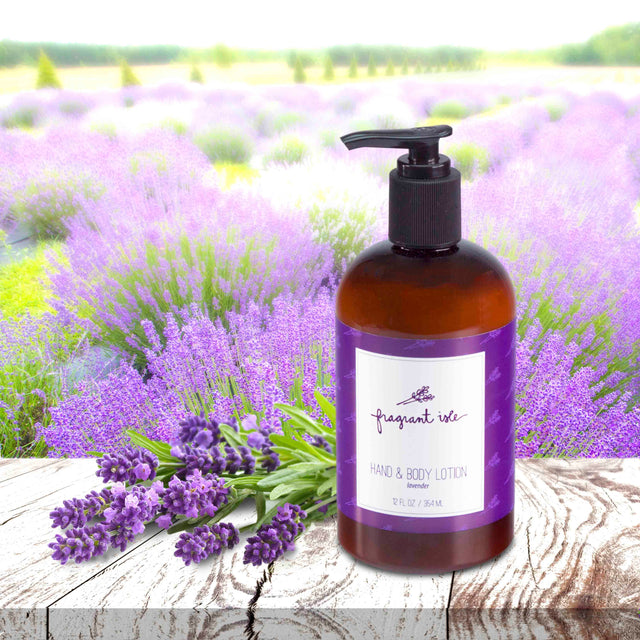 Lavender Hand & Body Lotion - 12 oz