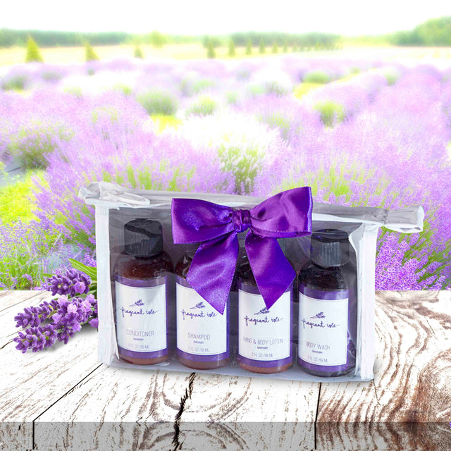 Lavender Travel Kit