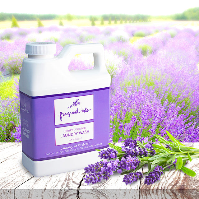 Luxury Lavender Laundry Wash - 16 fl oz