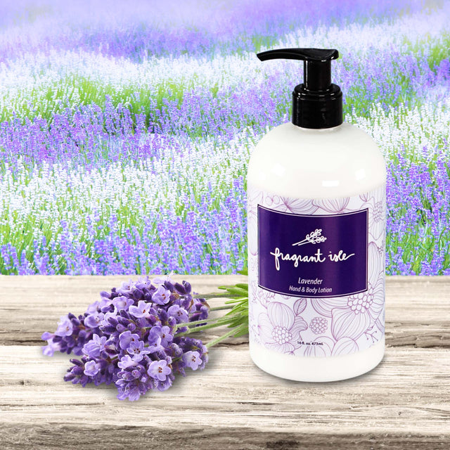 Lavender Hand & Body Lotion - 16 oz