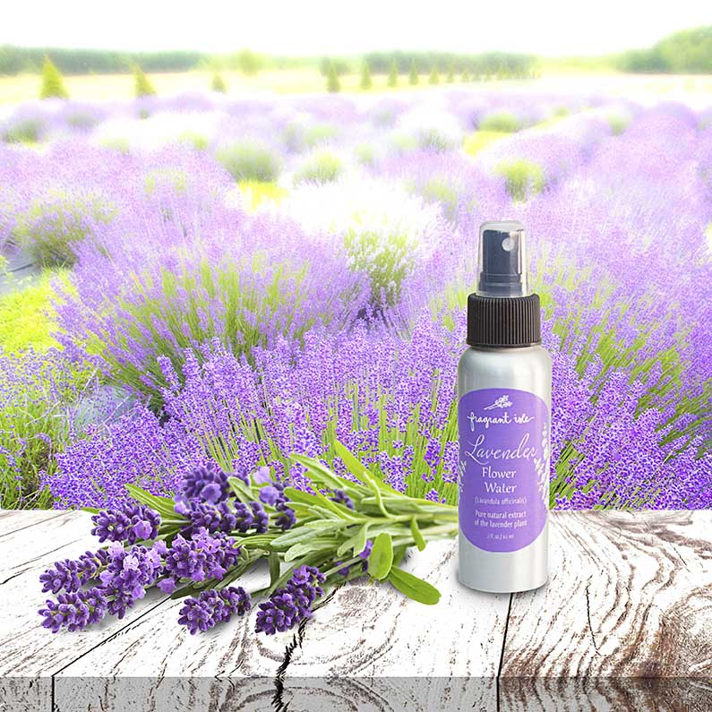 Lavender Flower Water - 2 oz