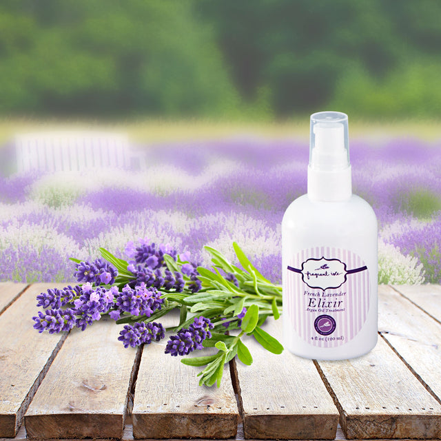 Elixir - Lavender and Argan Oil - 4 oz
