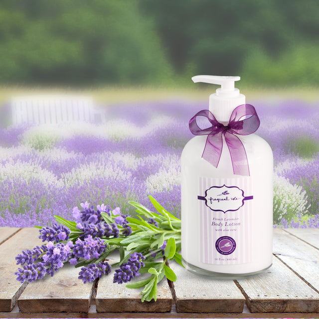 Lavender Body Lotion - 16 oz