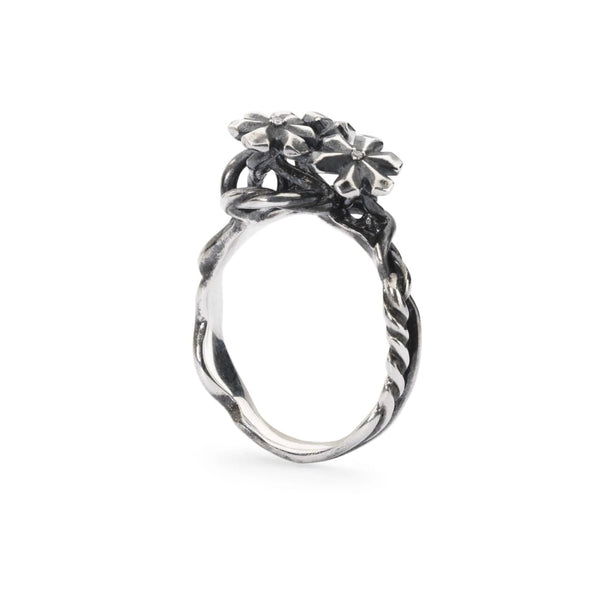 Strand of Lights Ring - Ring
